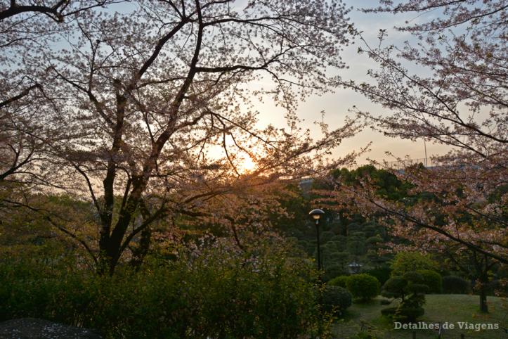 tokyo sumida park relatos viagem toquio japao roteiros dicas 4.png