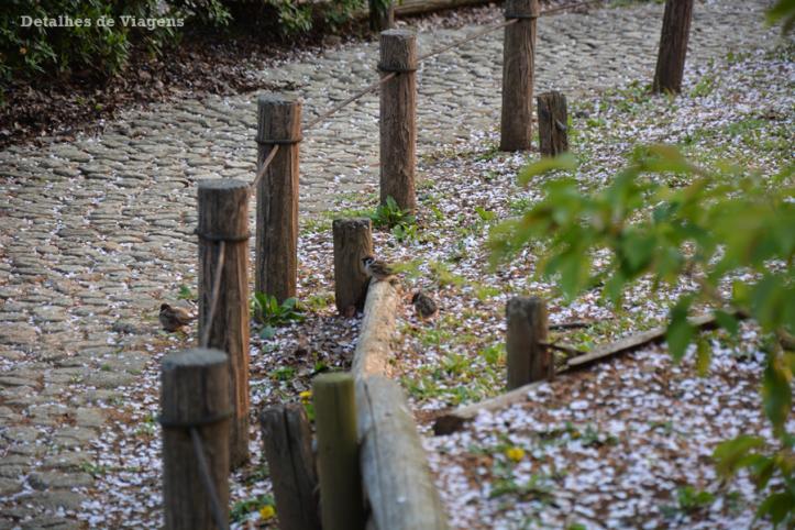 tokyo sumida park relatos viagem toquio japao roteiros dicas 6.png