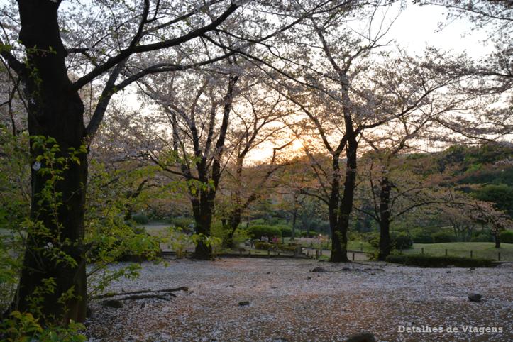 tokyo sumida park relatos viagem toquio japao roteiros dicas 7.png