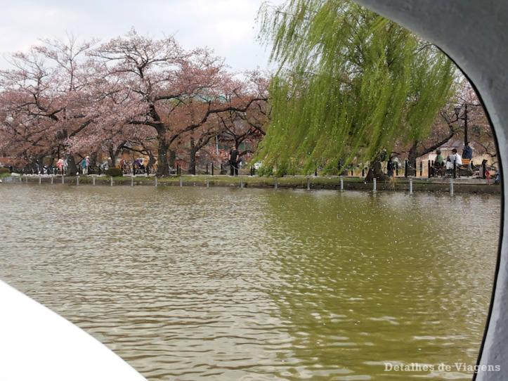 tokyo-ueno-park-lago-pedalinho-relatos-viagem-japao-roteiro-dicas-3
