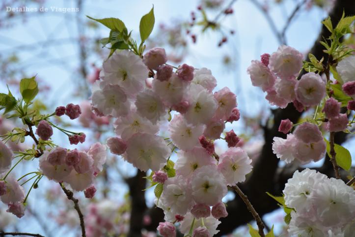 tokyo ueno park relatos viagem japao roteiro dicas o que fazer toquio 3.png