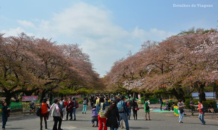 tokyo-ueno-park-sakura-cerejeiras-relatos-viagem-japao-roteiro-dicas