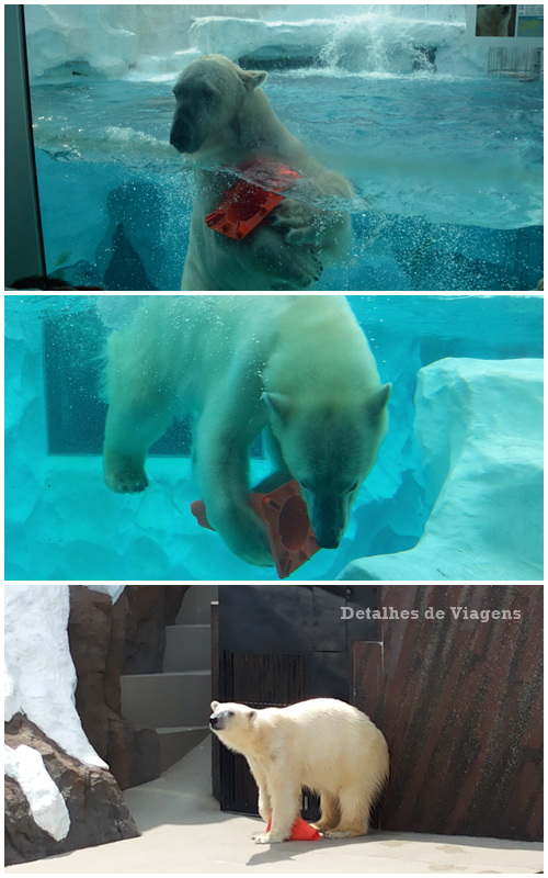tokyo-ueno-park-zoo-relatos-viagem-japao-roteiro-dicas-6