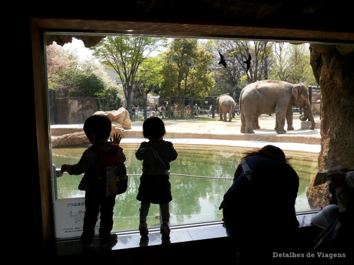 tokyo ueno park zoo relatos viagem japao roteiro dicas 8.png