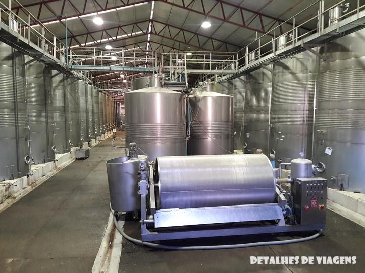 etapas producao vinho vinicola santa rita tour classico chile santiago relatos viagem
