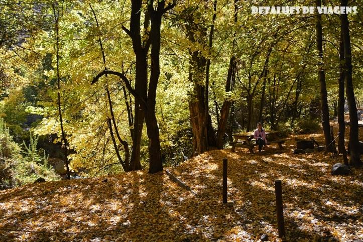 parque cordillera yerba loca rio trilha trekking caminhada natureza santiago o que fazer relatos viagem (10)