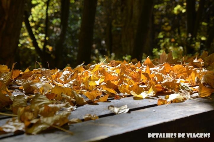 parque cordillera yerba loca rio trilha trekking caminhada natureza santiago o que fazer relatos viagem (11)