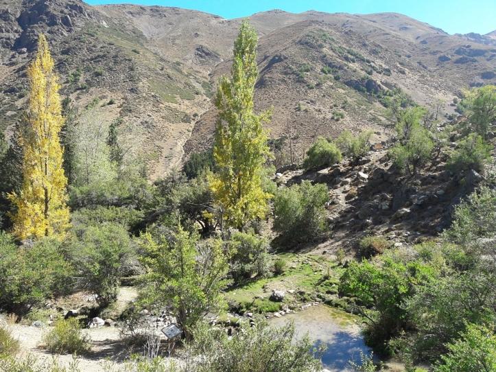 parque cordillera yerba loca rio trilha trekking caminhada natureza santiago o que fazer relatos viagem (6).jpg