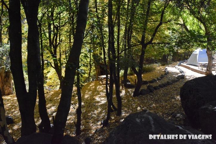 parque cordillera yerba loca rio trilha trekking caminhada natureza santiago o que fazer relatos viagem (9)