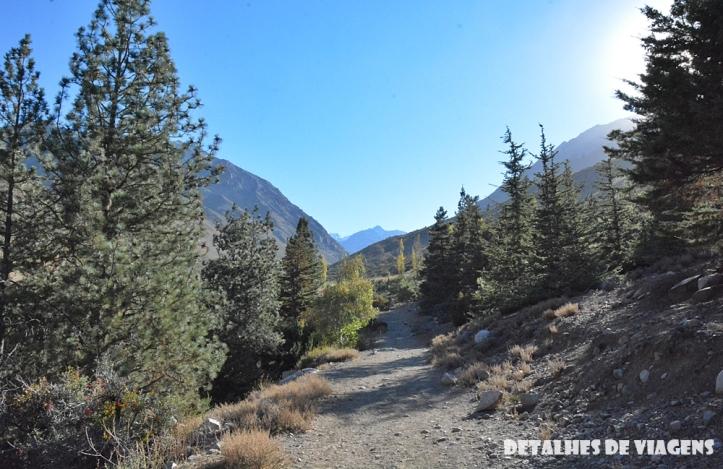 parque cordillera yerba loca trilha trekking caminhada natureza santiago o que fazer relatos viagem 3.JPG