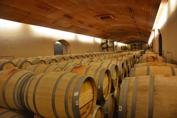 vinicola concha y toro barris vinho tour tradicional enoturismo relatos viagem santiago chile