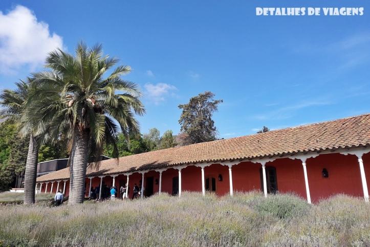 vinicola santa rita lavandas pontos turisticos santiago chile o que fazer relatos viagem