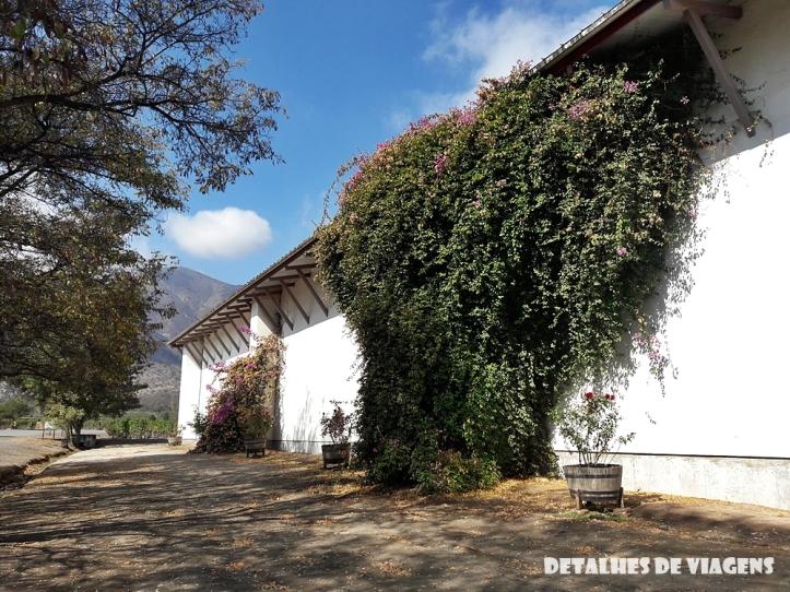 vinicola santa rita pontos turisticos santiago chile o que fazer relatos viagem 4