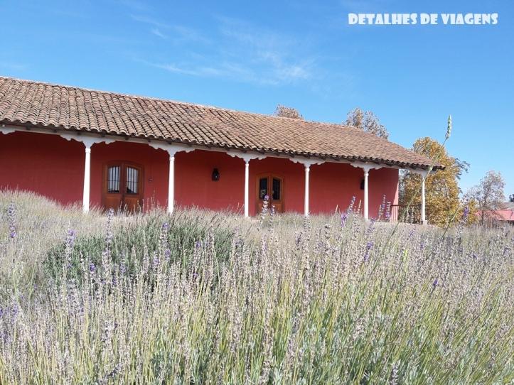 vinicola santa rita restaurante loja lavandas pontos turisticos santiago chile o que fazer relatos viagem